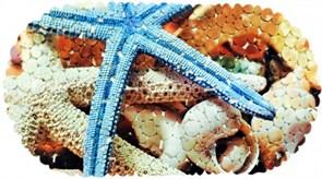 Коврик СПА 14-124, 67x36см, Морская звезда, виниловый